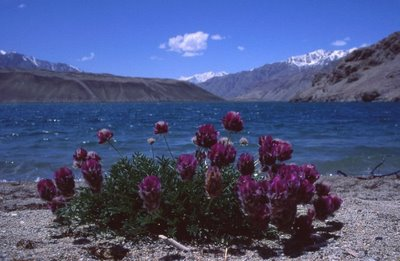 A lake in northern Badakshan, Afg near the Tajik border