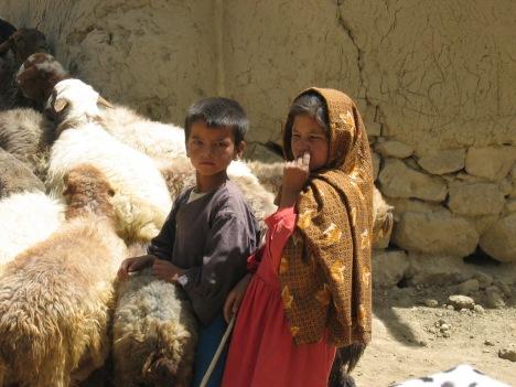 Goat_farming_Afghanistan