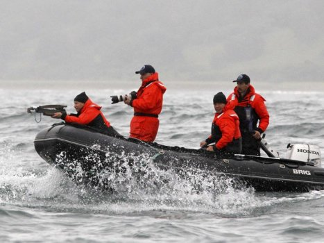 no-beast-is-safe-from-an-armed-vladimir-putin-he-shot-an-endangered-grey-whale-with-a-crossbow-from-a-motorboat-again-to-help-researchers-track-the-animal