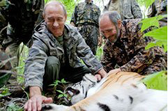 Putin with tigress