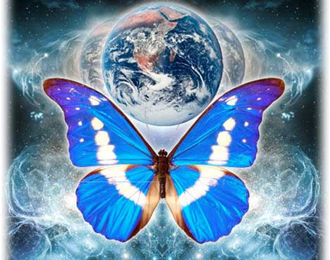 earth_butterfly