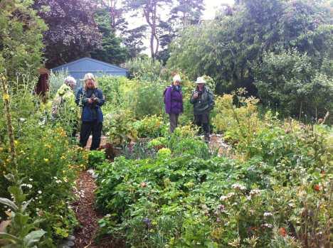Findhorn-gardens