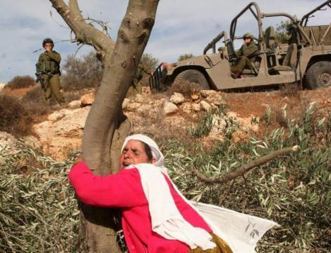 Palestinian woman 2