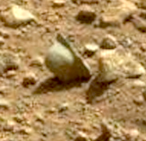 Helmet on Mars