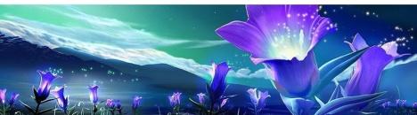 purple flowers httpwww.azaret.combg%D0%A1%D0%B0%D0%B9%D1%82ascension_in_20124854