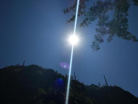photo by Meg Davis in Tucson, Arizona